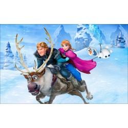Stickers Autocollant Frozen La reine des neiges réf 15201