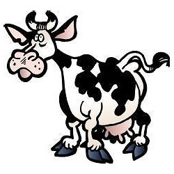 Sticker enfant Vache 30x27cm