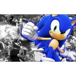 Sticker Autocollant Sonic réf 22565