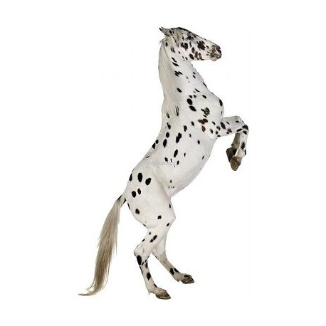 Sticker cheval noir et blanc 025 stickers muraux enfant - Cheval a imprimer noir et blanc ...