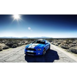 Sticker autocollant auto voiture Ford shelby gt500 A225