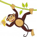 Sticker enfant Singe liane 906
