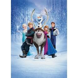 Papier peint Géant Frozen la reine des neiges