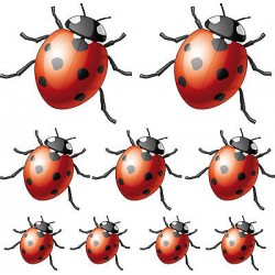 9 stickers Coccinelles