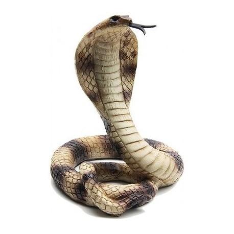 Sticker serpent Cobra cobra