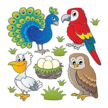 Stickers kit enfant planche de stickers Oiseaux réf 3695 (12 dimensions)