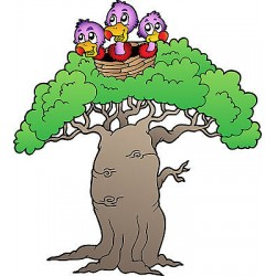 Sticker enfant Oiseaux arbre réf 3725