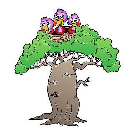 Sticker enfant Oiseaux arbre réf 3725 (de 10 cm à 130cm de hauteur)