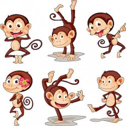 Stickers kit enfant planche de 6 stickers Singes réf 3573(12 dimensions)