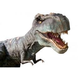 Sticker animal dinosaure 94x73cm