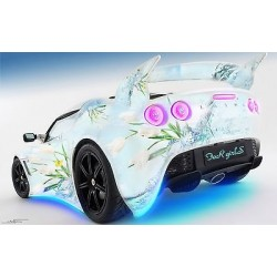 Sticker autocollant auto voiture Lotus for girls A266