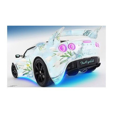 sticker autocollant auto voiture lotus for girls a266 stickers muraux enfant. Black Bedroom Furniture Sets. Home Design Ideas