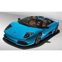 Sticker autocollant auto voiture Lamborghini murcielago A239